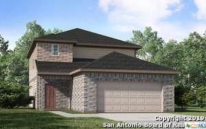 163 Laurel Grace, New Braunfels, TX 78130 (MLS #392755) :: Vista Real Estate
