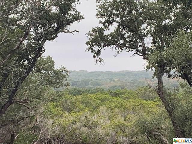 00 Addax Court, Lampasas, TX 76550 (MLS #394315) :: Vista Real Estate