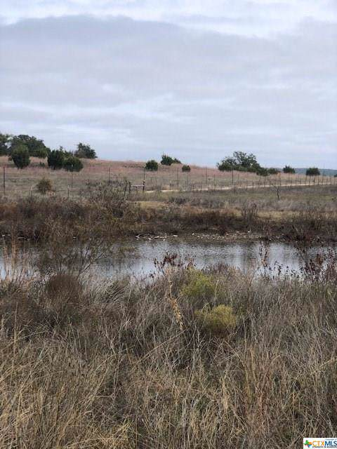 Lot 56 Fm 580, Lampasas, TX 76550 (MLS #394605) :: Texas Real Estate Advisors