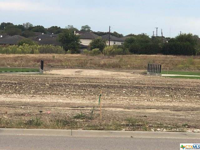 2981 Rosewood Drive, Killeen, TX 76502 (MLS #395806) :: The Real Estate Home Team