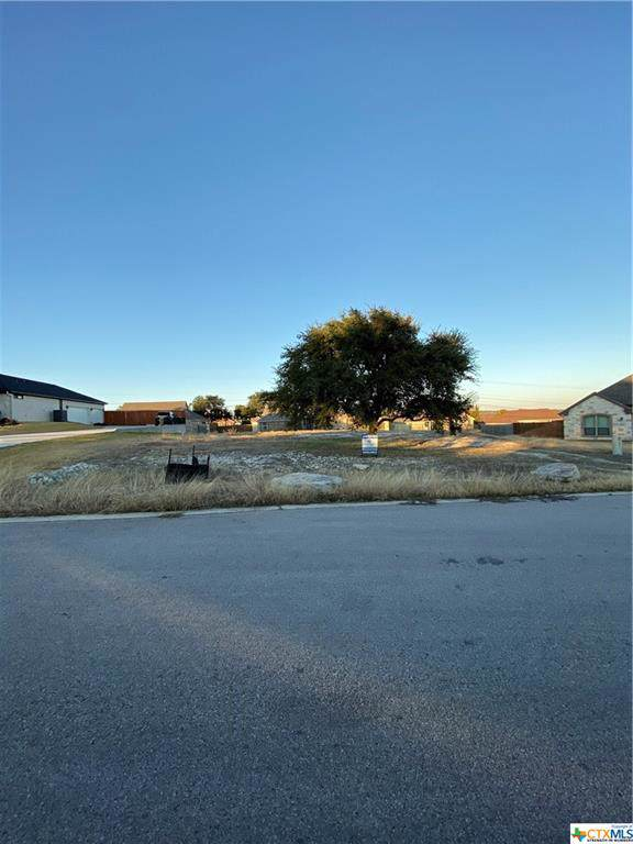3013 Heritage Loop, Nolanville, TX 76559 (MLS #396088) :: The i35 Group