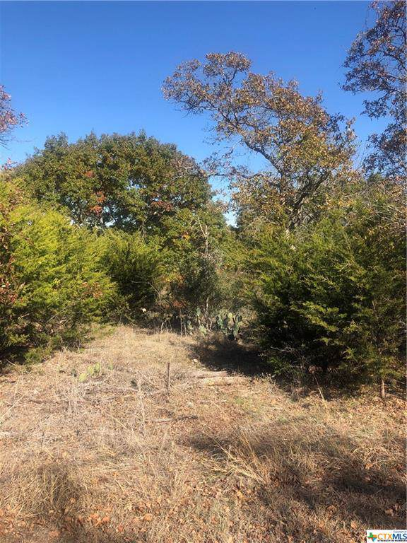 TBD Elf Trail, Belton, TX 76513 (MLS #396154) :: Vista Real Estate