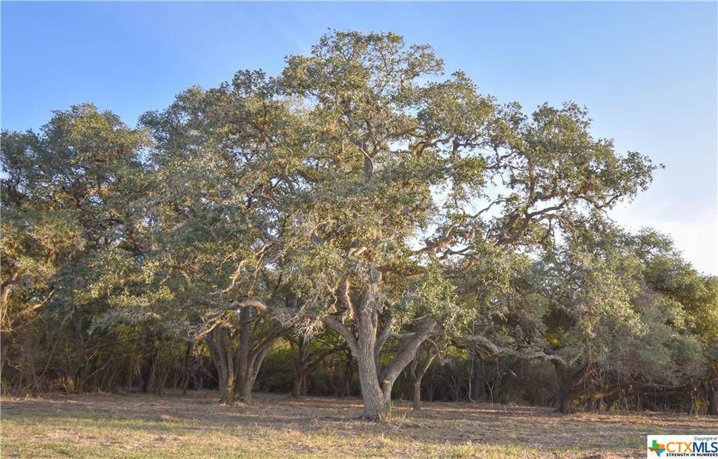 Tract 1 Post Oak Circle - Photo 1
