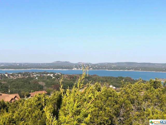 691 Highland Terrace Drive, Canyon Lake, TX 78133 (MLS #397618) :: Erin Caraway Group