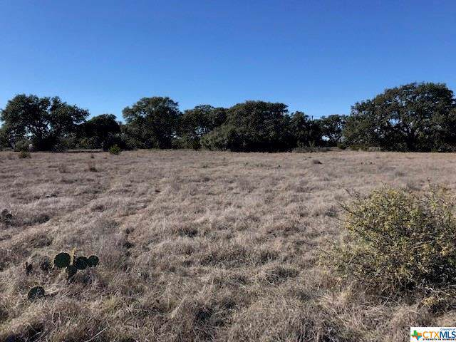 TBD Lot 161 Roy Nichols Road, Blanco, TX 78606 (MLS #398046) :: Brautigan Realty