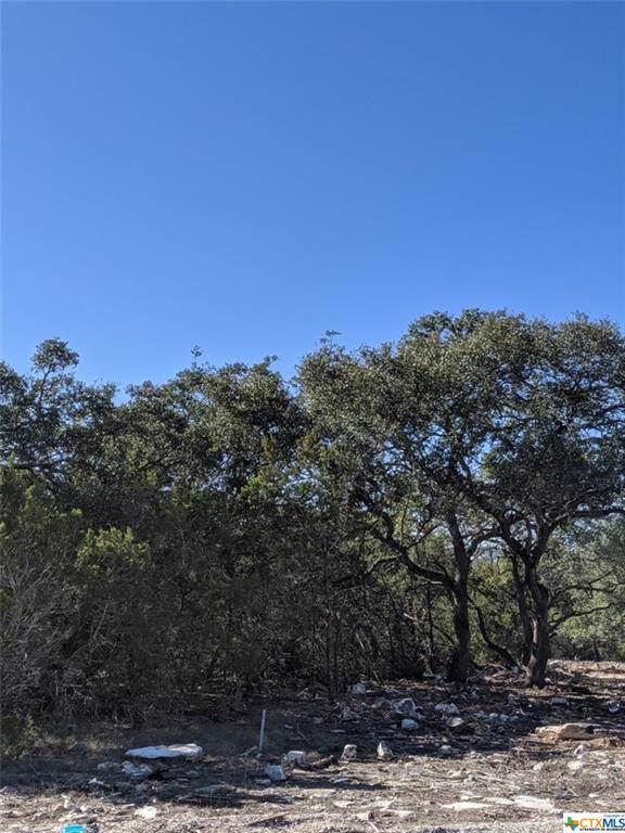 116 Starry Sky, New Braunfels, TX 78132 (MLS #398148) :: Brautigan Realty