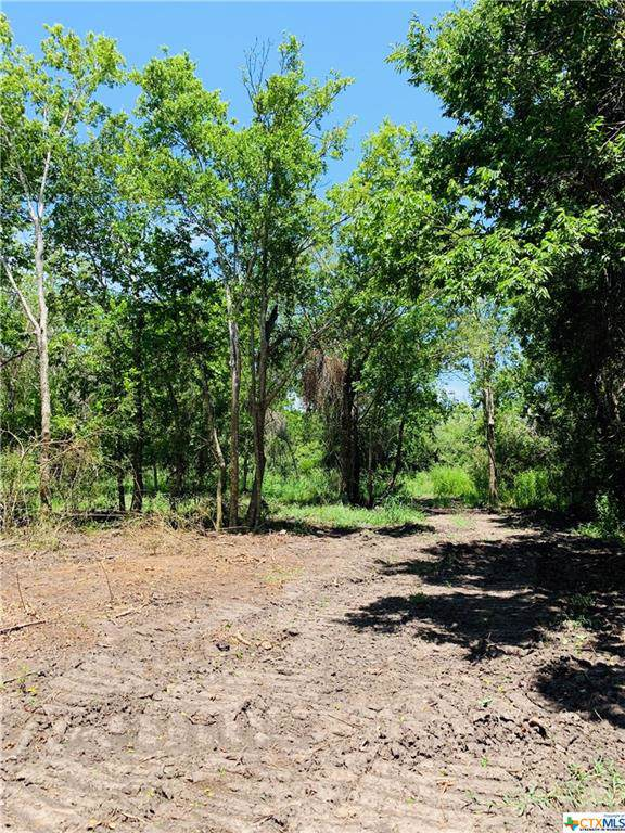 Lot 3 Trinity St, Edna, TX 77957 (MLS #398460) :: The Zaplac Group