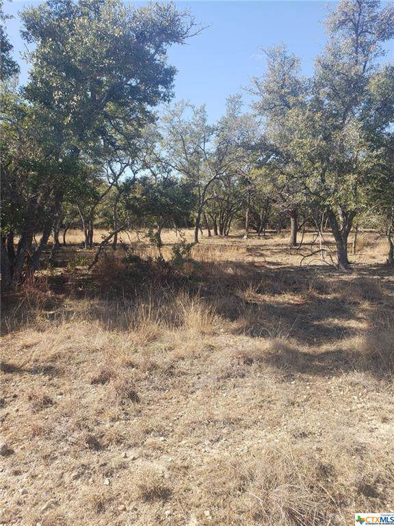 Lot 75 Cielo Springs Drive, Blanco, TX 78606 (MLS #399062) :: Brautigan Realty