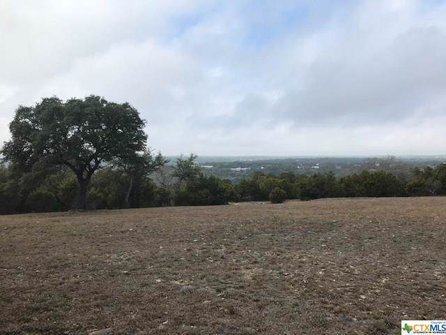 276 River Ridge, Spring Branch, TX 78070 (MLS #399699) :: Kopecky Group at RE/MAX Land & Homes