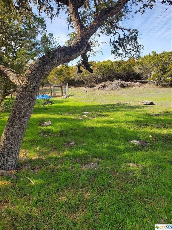 1339 Overbrook Lane, Spring Branch, TX 78070 (MLS #399812) :: Berkshire Hathaway HomeServices Don Johnson, REALTORS®