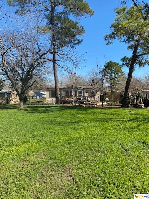 233 Shady Lane, Seguin, TX 78155 (MLS #400406) :: Erin Caraway Group