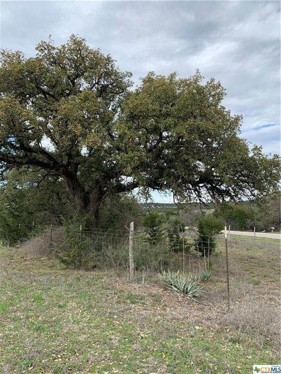 00 Stillman Valley Road, Florence, TX 76527 (MLS #404591) :: RE/MAX Family