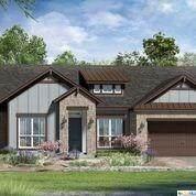 116 Dashing Sycamore Street, San Marcos, TX 78666 (MLS #405490) :: Kopecky Group at RE/MAX Land & Homes
