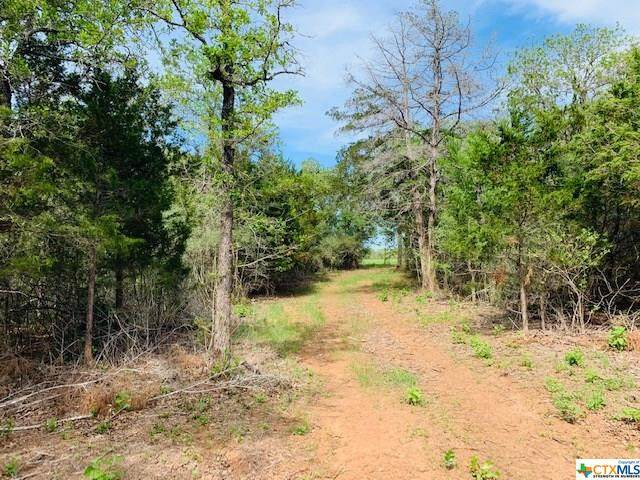 646 County Rd 278, Luling, TX 78629 (MLS #408502) :: The Real Estate Home Team
