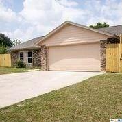 3001 Panhandle Drive, Killeen, TX 76542 (MLS #410173) :: Brautigan Realty