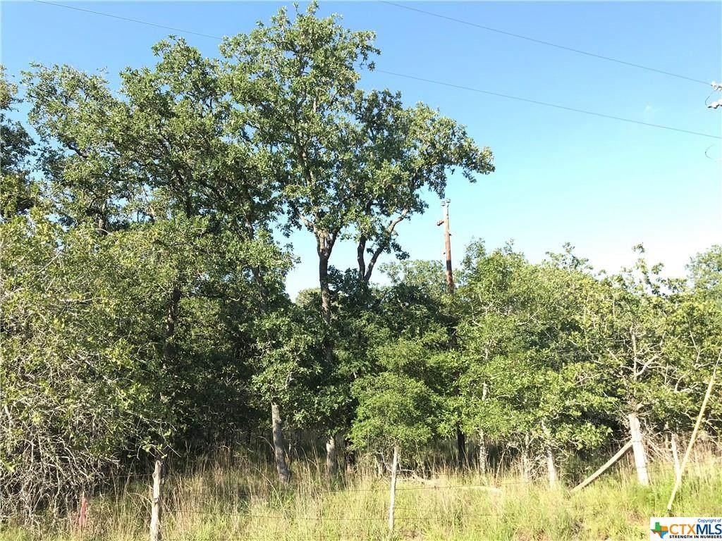0000000 Turkey Tree Trail Road - Photo 1