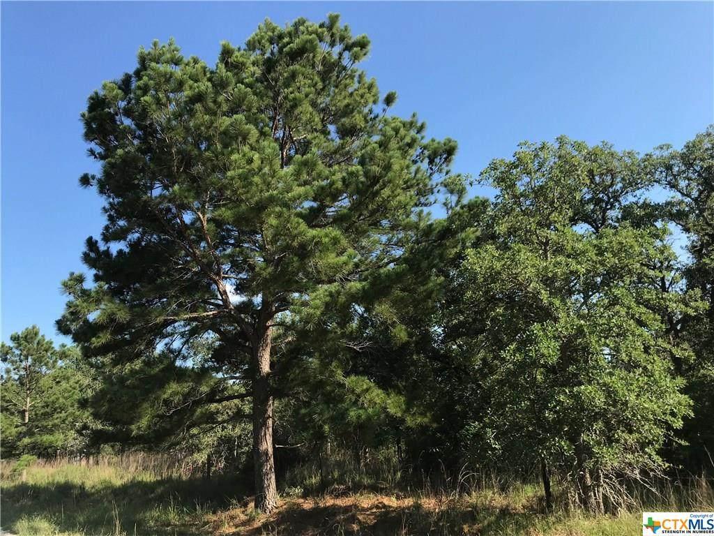 000 Turkey Tree Trail Road - Photo 1