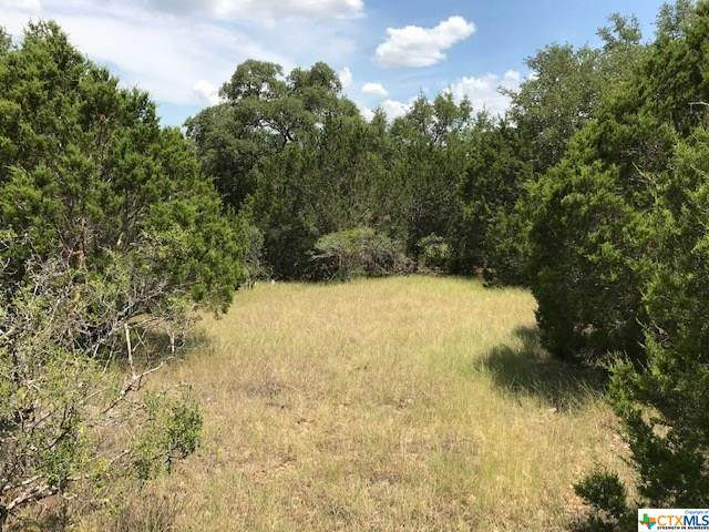 Lot 1787 Curvatura, New Braunfels, TX 78132 (MLS #414430) :: Kopecky Group at RE/MAX Land & Homes
