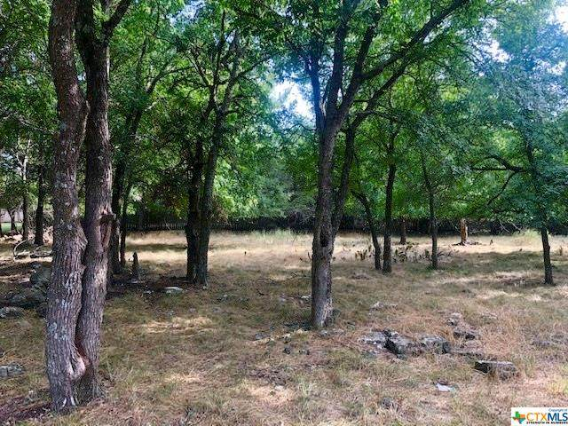 TBD Jack Rabbit Circle, Belton, TX 76513 (MLS #414953) :: Brautigan Realty