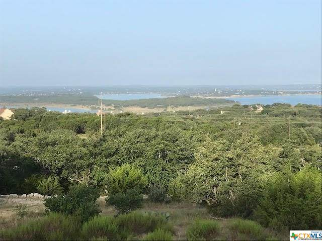 166 Holm Ranch Road, Fischer, TX 78623 (MLS #414960) :: Kopecky Group at RE/MAX Land & Homes