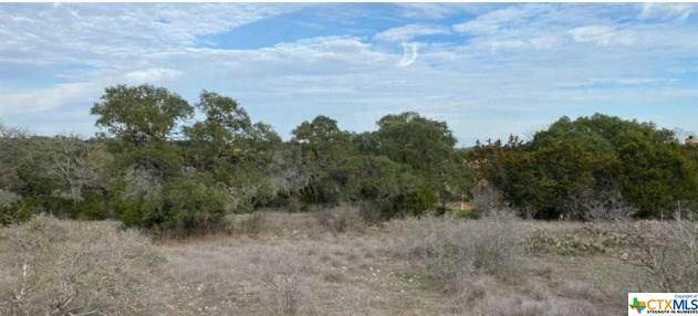 210 Mexican Hat, Spring Branch, TX 78070 (MLS #416385) :: The Zaplac Group