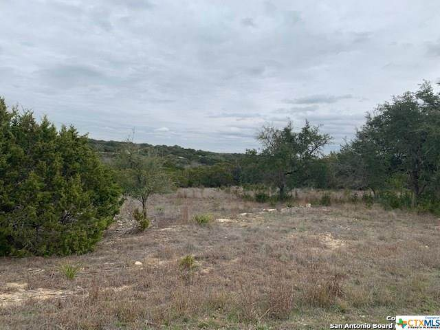 235 San Salvadore, Canyon Lake, TX 78133 (#416459) :: Realty Executives - Town & Country