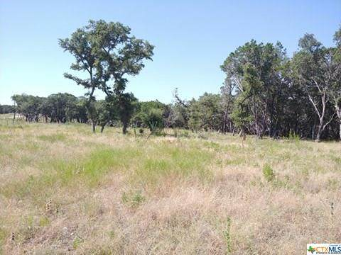 000 Addax Court, Lampasas, TX 76550 (MLS #416849) :: The Zaplac Group