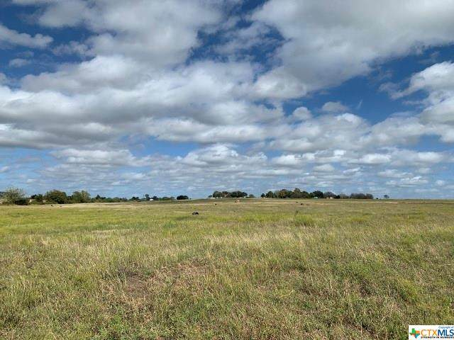81 Pvt Road 3095 Road, Shiner, TX 77984 (MLS #418896) :: RE/MAX Land & Homes