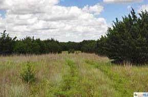 Tract 6 Harmon Ranch - Photo 1