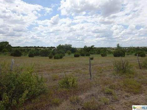 1121 Cr 217, Florence, TX 76527 (MLS #419165) :: RE/MAX Family