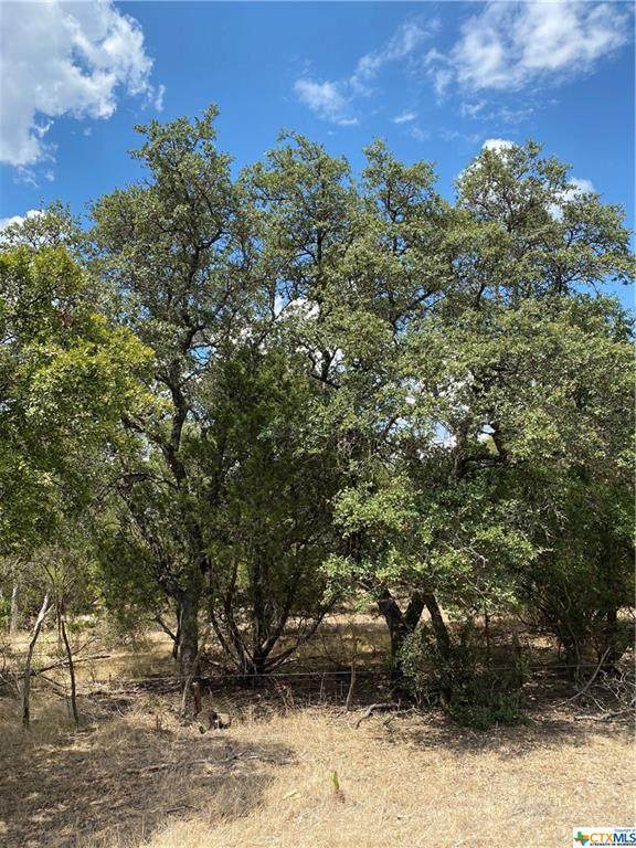 TBD Lot 10 Mill Creek Ranches Private Rd 4717, Kempner, TX 76539 (MLS #420571) :: The Real Estate Home Team