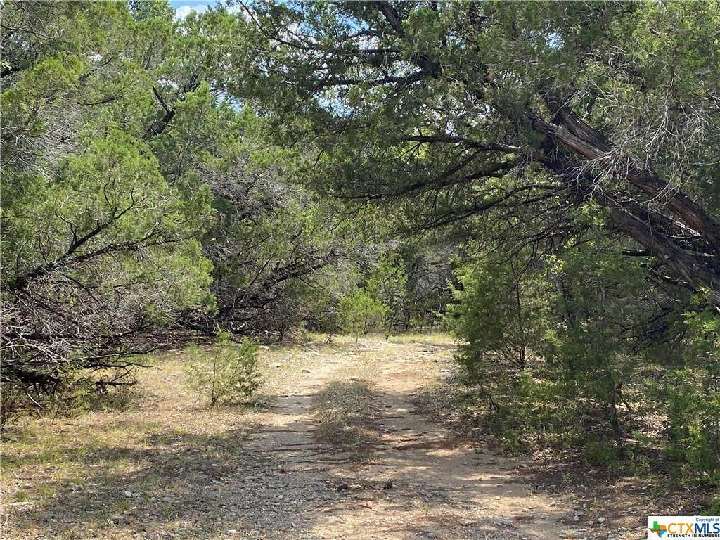 TBD Lot 07 Mill Creek Ranches Private Rd 4717 - Photo 1