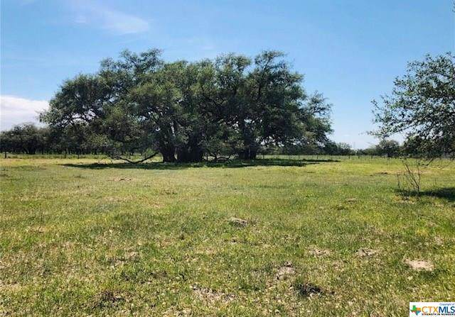 12587 N Us Hwy 59, Victoria, TX 77905 (MLS #421832) :: Kopecky Group at RE/MAX Land & Homes