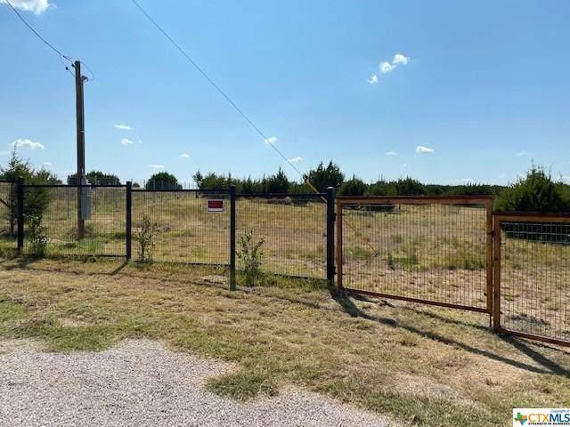 186 Sun View Road, Bertram, TX 78605 (MLS #422242) :: Brautigan Realty