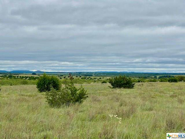 TBD County Road 2337, Lampasas, TX 76550 (MLS #422473) :: The Zaplac Group