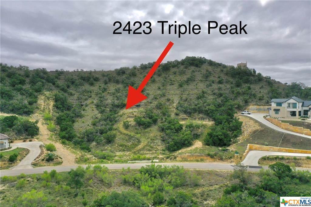 2423 Triple Peak Drive - Photo 1