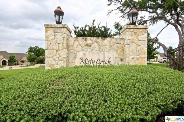 6632 Misty Creek Lane, Temple, TX 76502 (MLS #423416) :: The Zaplac Group