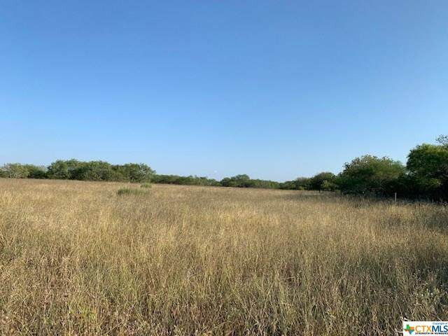 00 W Fm 884, Goliad, TX 77963 (MLS #424497) :: RE/MAX Land & Homes