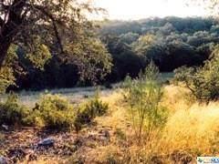 7922 Sky Vista, San Antonio, TX 78266 (#424529) :: First Texas Brokerage Company