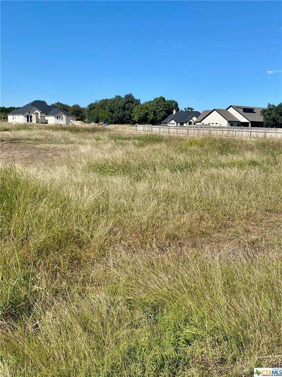 120 Chattanooga Court, Belton, TX 76513 (MLS #425199) :: The Zaplac Group