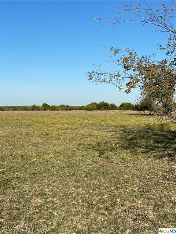 5130 Sh 138 Lot 4, Florence, TX 76527 (MLS #425785) :: The Zaplac Group