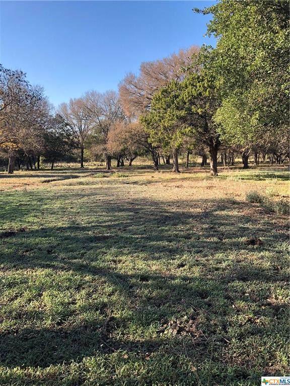 6230 Elm Grove Road, Belton, TX 76513 (#427403) :: First Texas Brokerage Company
