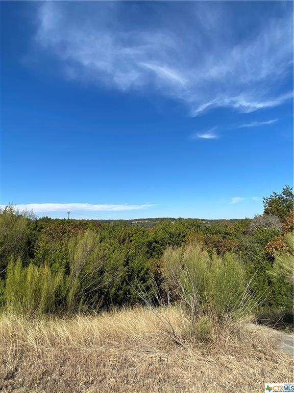 2427 and 2421 Comal Springs, Canyon Lake, TX 78133 (#427778) :: First Texas Brokerage Company
