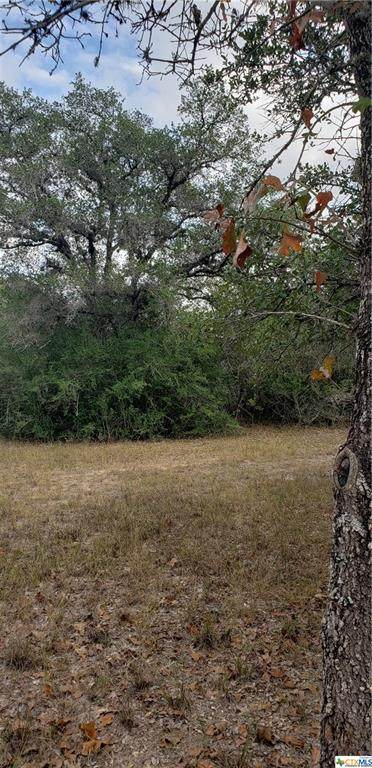 0000 Baecker Rd, Goliad, TX 77963 (MLS #428812) :: The Barrientos Group