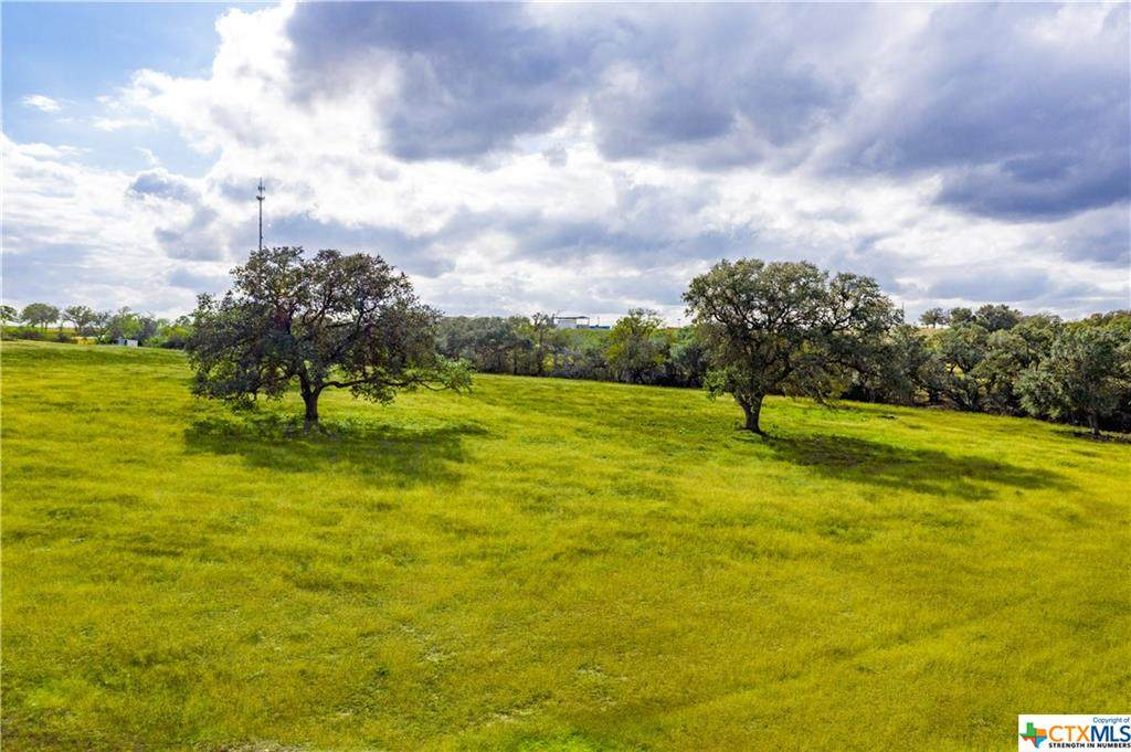1440 Old Goliad - Tract D Road - Photo 1