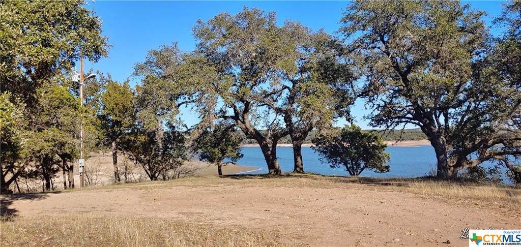 TBD Turkey Tree Road - Photo 1