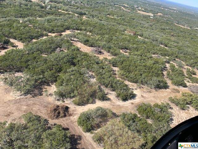 18 +/- Acres Anhalt Rd, Spring Branch, TX 78070 (MLS #429615) :: The Barrientos Group