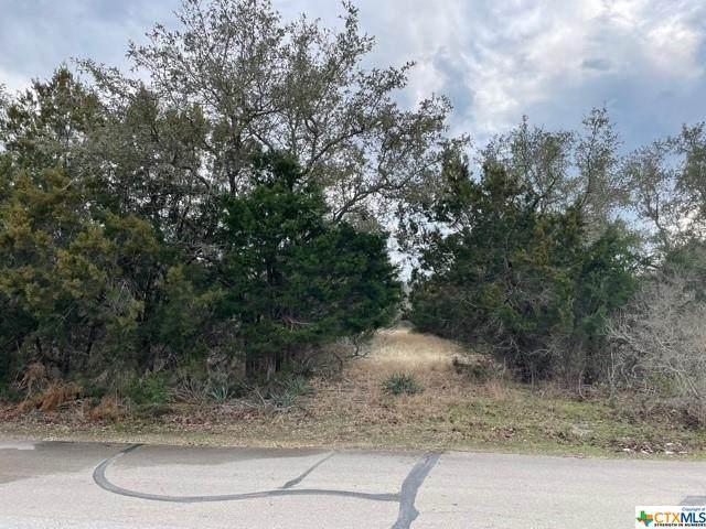5210 Denmans Loop, Belton, TX 76513 (MLS #430123) :: Texas Real Estate Advisors