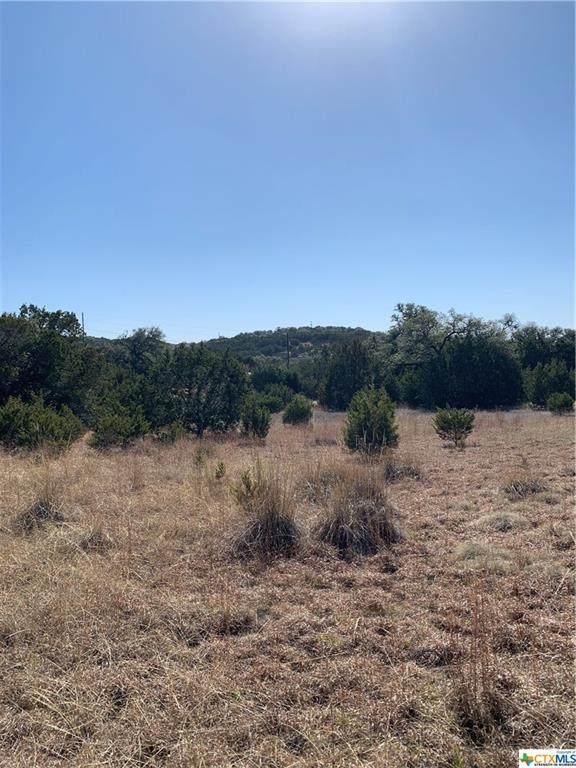 241 Magnolia Meadow, Canyon Lake, TX 78133 (MLS #430344) :: Berkshire Hathaway HomeServices Don Johnson, REALTORS®