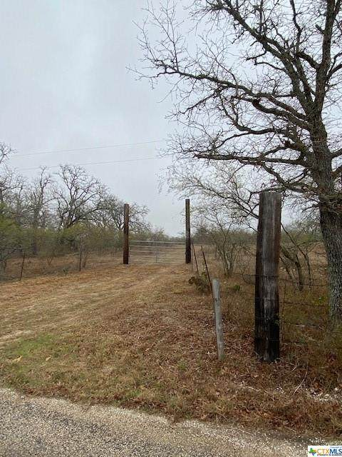 1644 Gravel Pit Road, Seguin, TX 78155 (MLS #432774) :: Texas Real Estate Advisors